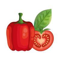 frische Tomate mit Pfeffergemüse isolierte Ikonen vektor