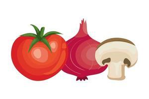 färsk tomat med lila lök och svamp vektor