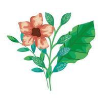 niedliche Blumen mit Zweigen und Blättern isolierte Ikone