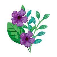 söta blommor lila med grenar och blad isolerade ikon