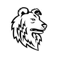 shetland fårhund eller shetland collie maskot svartvitt vektor