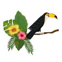 Tukan auf Zweig mit Blättern und Blüten vektor