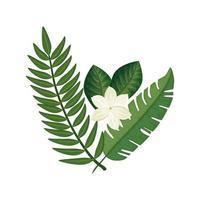 niedliche Blume mit Zweigen und Blättern isolierte Ikone vektor
