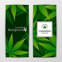 Satz Vektorabdeckungsschablonen mit Cannabisblättern vektor