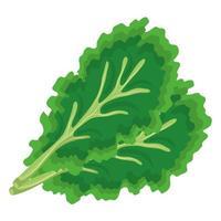 frisches Gemüse Koriander gesunde Lebensmittelikone