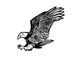 Hand gezeichnete Adlerillustration lokalisiert auf weißem Hintergrund. fliegender monochromer Adler für Logo, Emblem, Tapete, Plakat oder T-Shirt Illustration. amerikanisches Symbol der Freiheit. vektor
