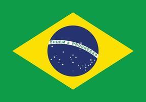 Brasilien flagga vektor isolera banner tryck konst