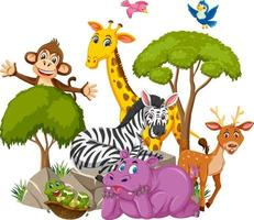 vilda djur grupp seriefiguren på vit bakgrund vektor