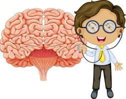 großes Gehirn mit einer Doktor-Zeichentrickfigur vektor