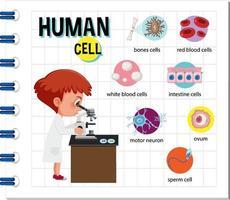 diagram över mänsklig cell för utbildning vektor
