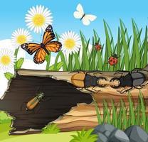 viele verschiedene Insekten in der Gartenszene vektor