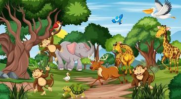 viele verschiedene Tiere in der Waldszene vektor