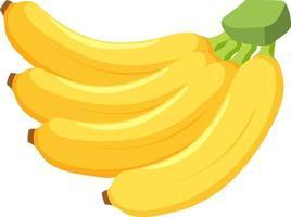 Bündel Bananen lokalisiert auf weißem Hintergrund vektor