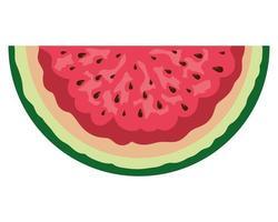 färsk vattenmelon tropisk frukt del vektor