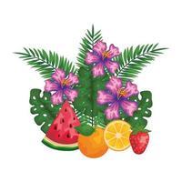 Früchte mit Blattpalmen und Blüten vektor