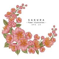 Dekorative handgezeichnete botanische Illustrationen der Kirschblütenblume. vektor