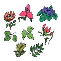 Färgglada giftiga blommor