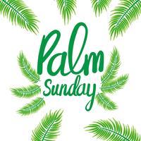 Palmsonntag Hintergrund vektor