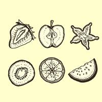 Frucht-Tiefdruck-Packung vektor