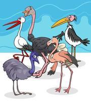 vilda fågelarter grupp tecknad illustration vektor