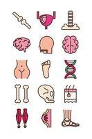 pädagogische Körperteile und Organe Icon Set vektor