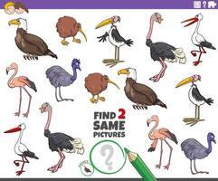 Finde zwei gleiche Vogelcharaktere für Kinder vektor
