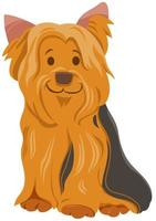 York oder Yorkshire Terrier Hund Zeichentrickfigur