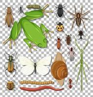Satz von verschiedenen Insekten vektor