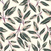 vacker calathea triostar lämnar sömlösa mönster
