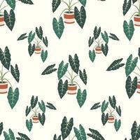 dekorative Zimmerpflanze Alocasia nahtloses Muster