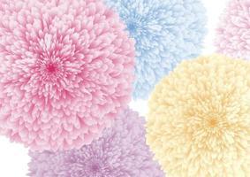 bunte Blumen auf weißem Hintergrundvektorillustration