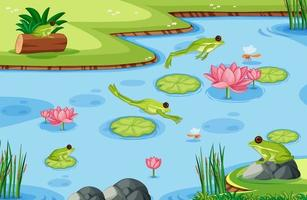många gröna grodor i dammscenen vektor