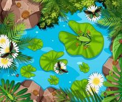 Luftszene mit Fröschen und Lotusblättern im Teich vektor