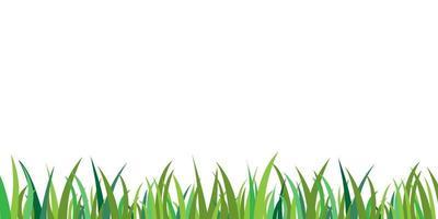 grönt gräs isolerad bakgrundsvektor. gräs ram ram dekoration. platt trädgård fält vektor