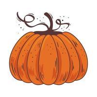 saisonale isolierte Ikone der Herbstkürbisfrucht vektor