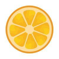 frische Ikone der halben Orangenzitrusfrucht vektor
