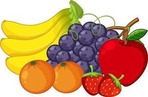 Satz bunte Frucht auf weißem Hintergrund vektor