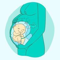 schwangere Frau mit Embryo in ihrer Schlundseitenansicht vektor