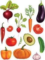 stor uppsättning akvarellgrönsaker på en vit bakgrund. illustration med realistiska grönsaker vektor