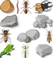 verschiedene Arten von Insekten mit Naturelementen vektor