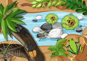 Draufsicht auf verschiedene Arten von Fröschen im Regenwald vektor