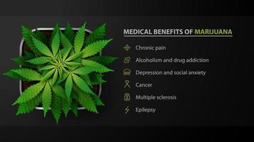 medicinska fördelar av marijuana, svart affisch med bach av cannabis i en kruka, ovanifrån