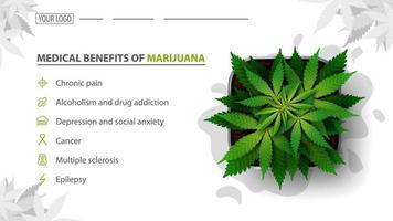 medicinska fördelar med marijuana, vit banner för webbplats med cannabisbuske i en kruka, ovanifrån.