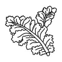 Grünkohl-Symbol. Gekritzel Hand gezeichnet oder Umriss Symbol Stil vektor