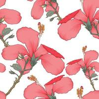 tropischer Sommer des nahtlosen Musters mit roten Hibiskusblumen auf lokalisiertem weißem Hintergrund. Vektorillustration Handzeichnung trockener Aquarellstil. für Stoffdesign. vektor