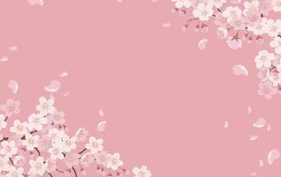 blommig bakgrund med körsbärsblommor i full blom på en rosa bakgrund. vektor