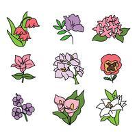 Set gekritzelte Blumen vektor