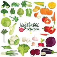 grönsaker örter set vektor