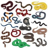 Schlange Tier Reptilien gesetzt vektor