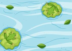 ovanifrån av groda på lotusblad i vattnet vektor